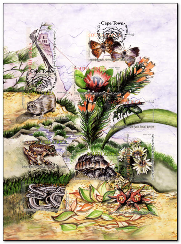 (原创)看邮票识南非:桌山顶上的生态 - 六一儿童 - 译海拾蚌