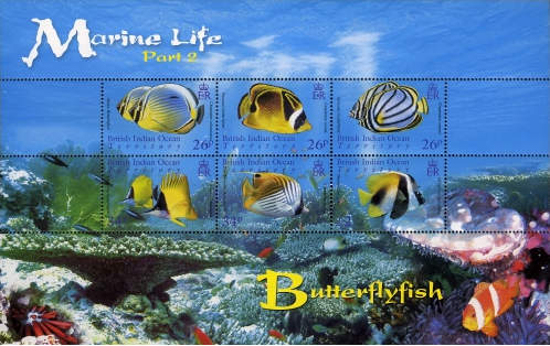 British Indian Ocean Territory 2006 Marine Life- Butterfly Fish MS.jpg