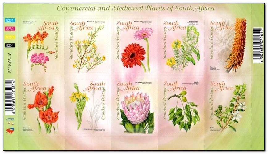 (原创)看邮票识南非32:药用食用及观赏植物 - 六一儿童 - 译海拾蚌