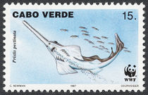 Cape Verde 1997 Small Toothed Saw FIsh b.jpg