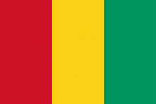 Guinea Flag.png