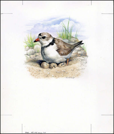 Barbados 1999 Threatened Species Piping Plover WWF b2.jpg