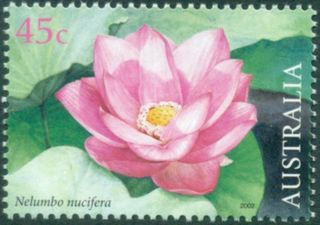 Australia 2002 Waterlilies - Thailand joint issue a.jpg