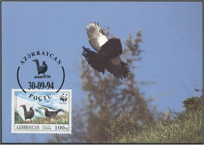 Azerbaijan 1994 The Caucasian Black Grouse c3.jpg