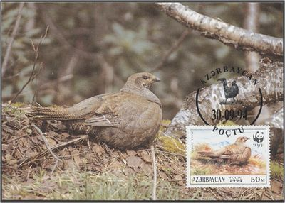 Azerbaijan 1994 The Caucasian Black Grouse a3.jpg