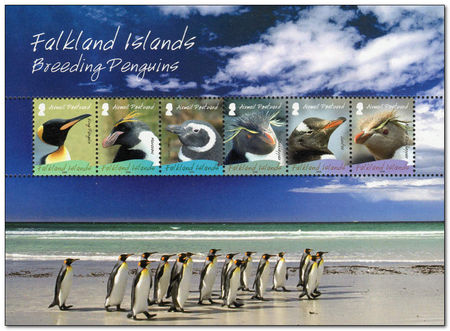 Falkland Islands 2008 Penguins ms.jpg