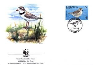 Barbados 1999 Threatened Species Piping Plover WWF 1.jpg