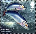GB 2014 Sustainable Fish a.jpg