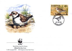 Barbados 1999 Threatened Species Piping Plover WWF 2.jpg
