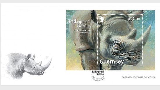 Talk:Black rhinoceros