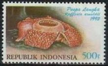 Indonesia 1992 Flowers b.jpg